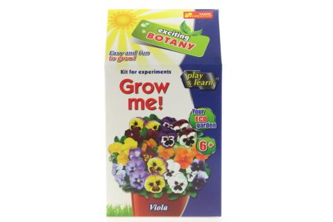 Vypěstuj si květinu - Macešky