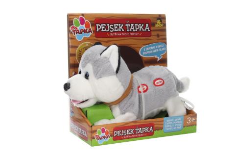Ťapka - Husky