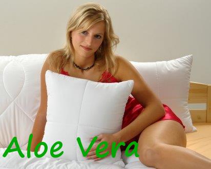 Polštářek Aloe Vera 30x40cm 150g se zipem