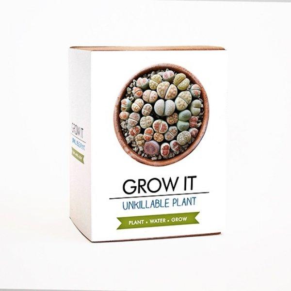 Grow it - nezničitelná rostlina