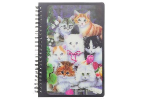 Zápisník A5 kočičky
