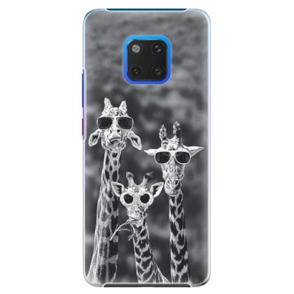 Plastové pouzdro iSaprio - Sunny Day - Huawei Mate 20 Pro