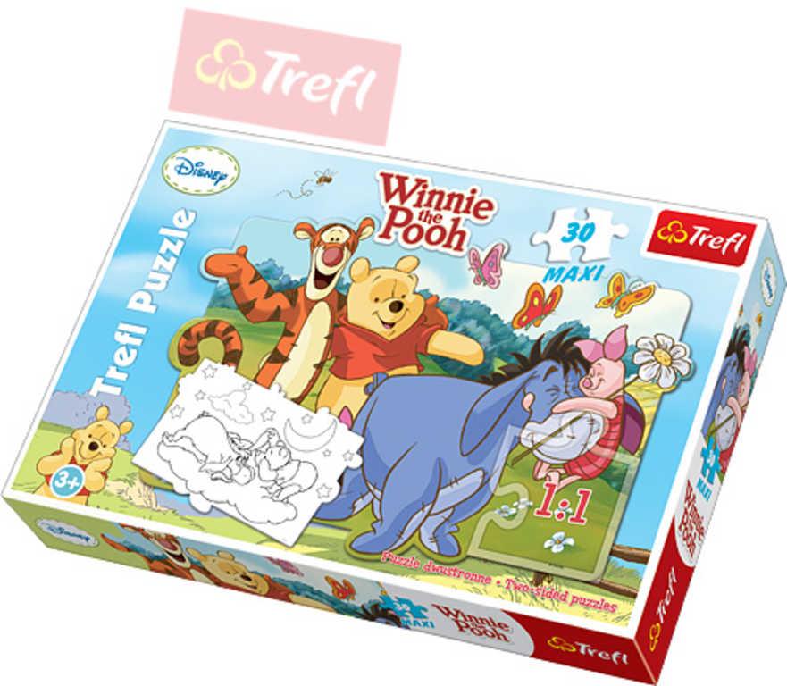 TREFL PUZZLE Disney Medvídek Pú 30 dílků Maxi 60x40cm 114163