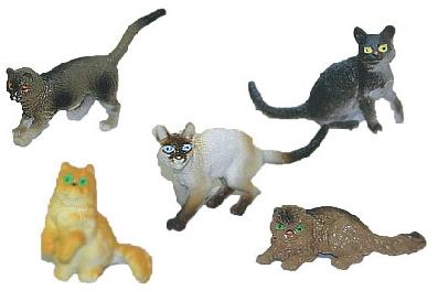 Kočky, 5 ks v sáčku
