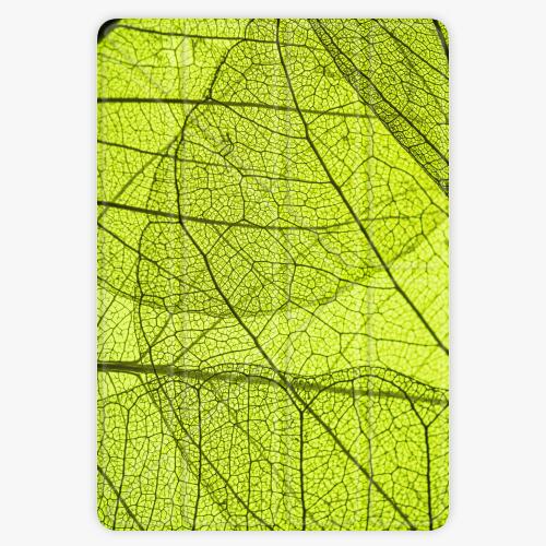 Pouzdro iSaprio Smart Cover - Leaves - iPad 9.7″ (2017-2018)