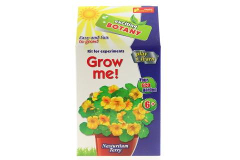 Vypěstuj si květinu - Lichořeřišnice