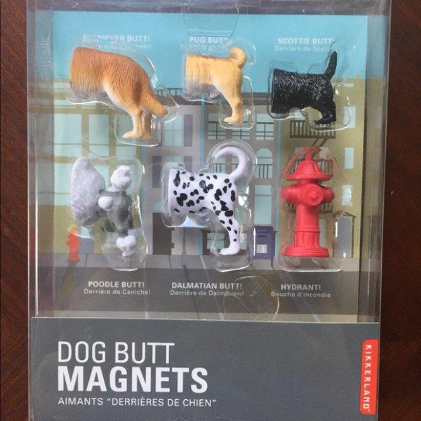 Magnety - pejsci