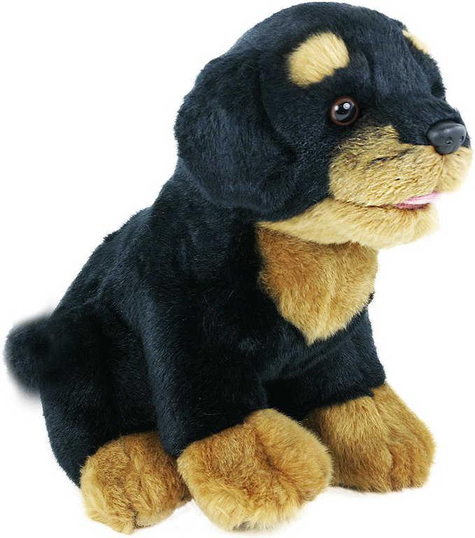 PLYŠ Pes Rotvajler 22cm sedící *PLYŠOVÉ HRAČKY*