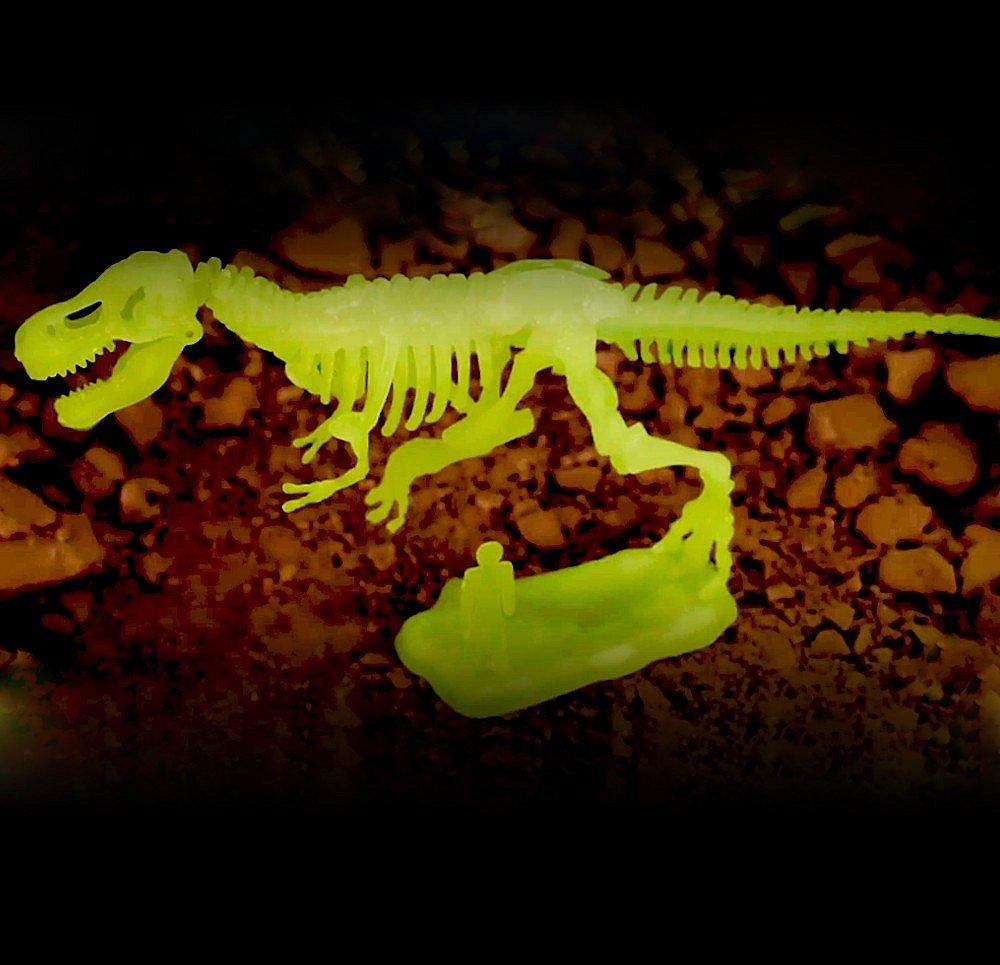 Sada pro malé archeology – Tyranosaurus Rex