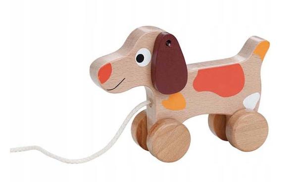 Lenin Edukační dřevěná hračka 15 cm tahací - Pejsek