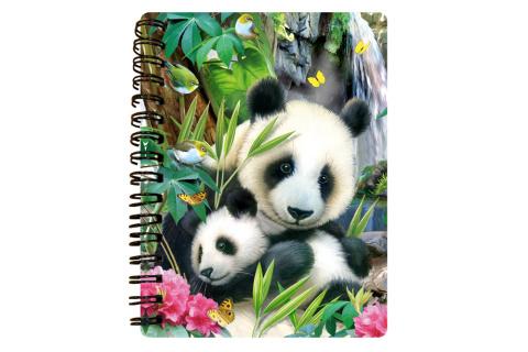 Zápisník A6 Panda 3D