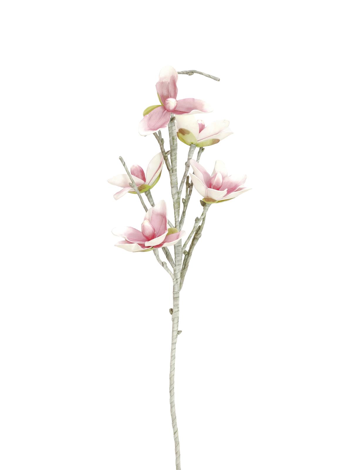 Větvička magnolie (EVA), bílo-růžová