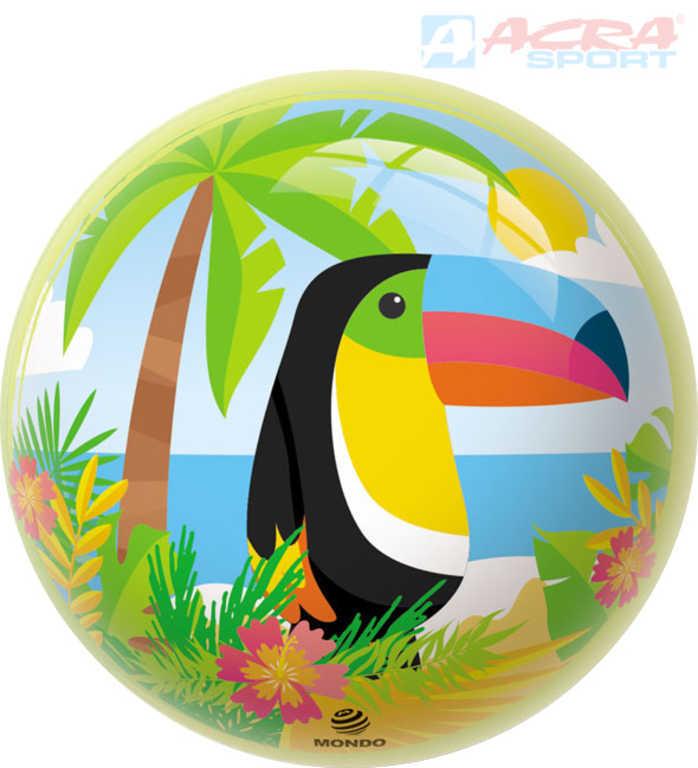 ACRA Baby míč Toucan 23cm lakovaný potištěný s ptáčkem papoušek Tukan