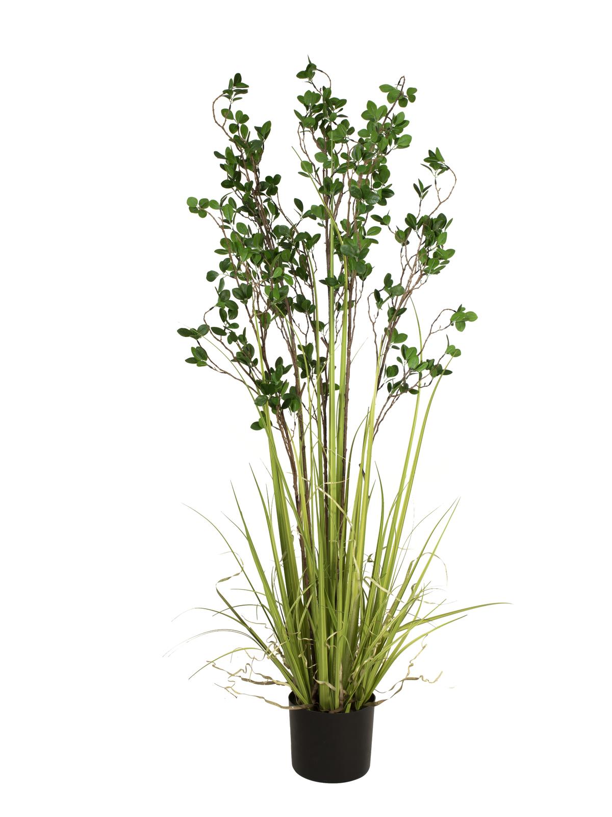 Zelený keř s trávou, 152 cm