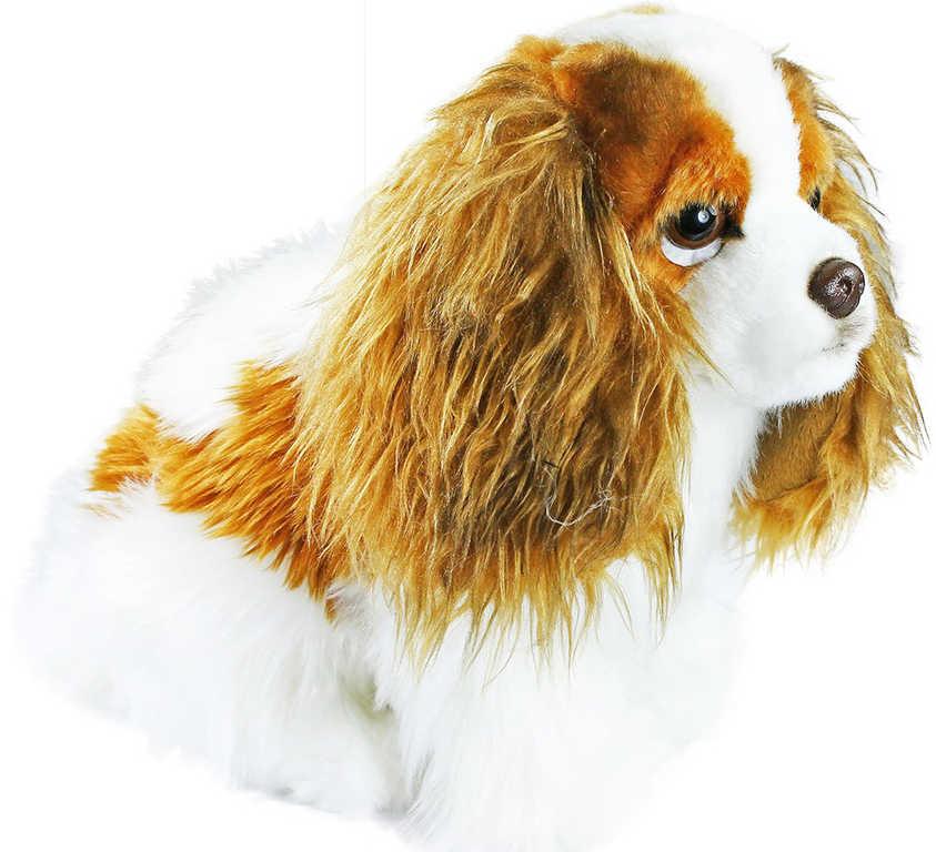 PLYŠ Pes King Charles 20cm španěl *PLYŠOVÉ HRAČKY*