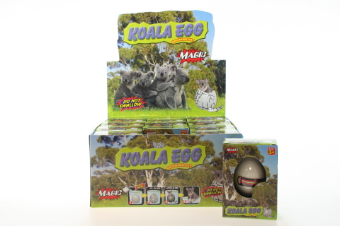 Vejce koala 12/bal