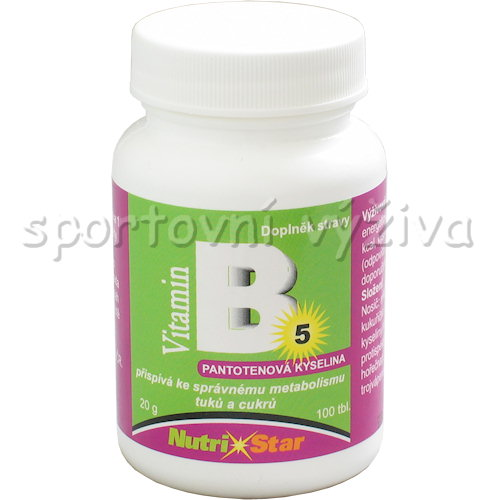 Kyselina pantothenová B 5 40mg 100 tablet