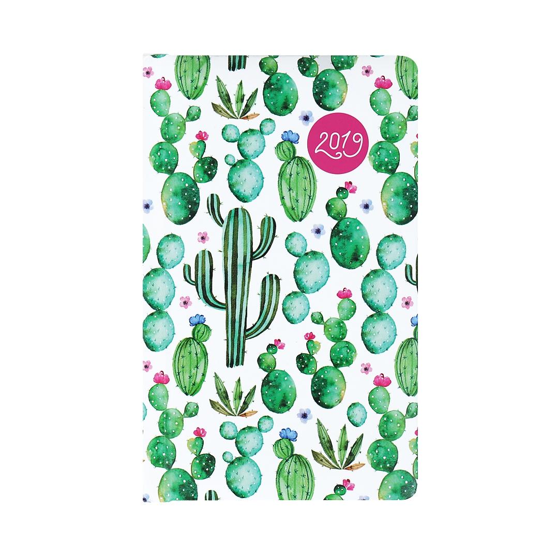 Kapesní diář - Kaktusy