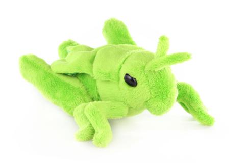 Plyš Luční kobylka
