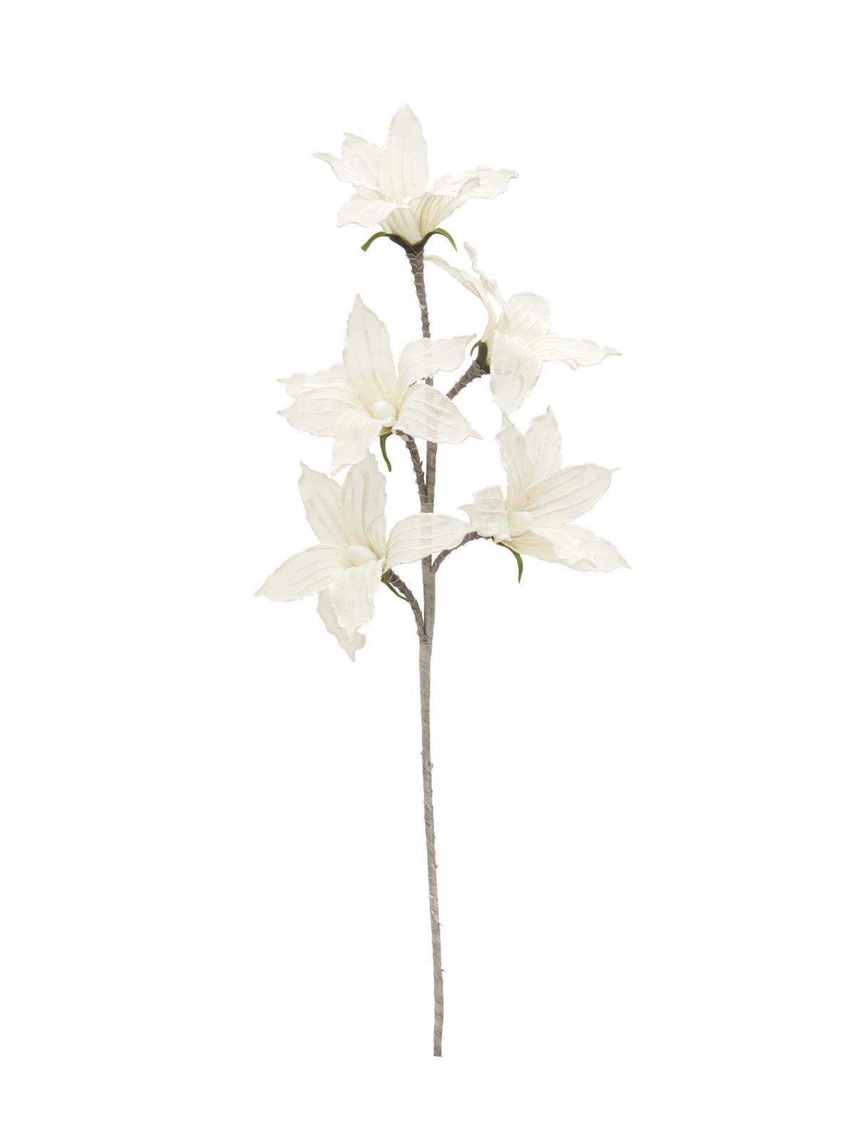 Větvička clematis (EVA), bílá