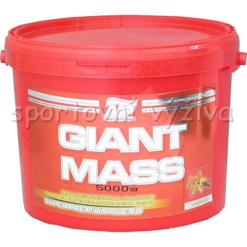 Maxi Giant Mass 2500 - 5kg-cokolada