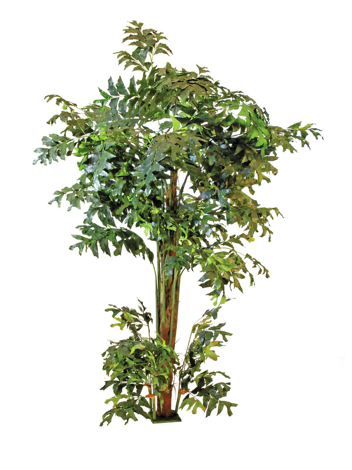 Rybí ocas - palmový strom, 305 cm