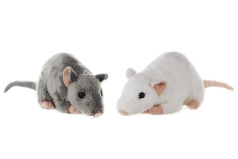 Plyš Myš
