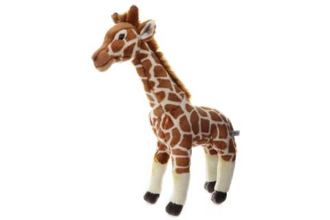 Plyš Žirafa 55 cm